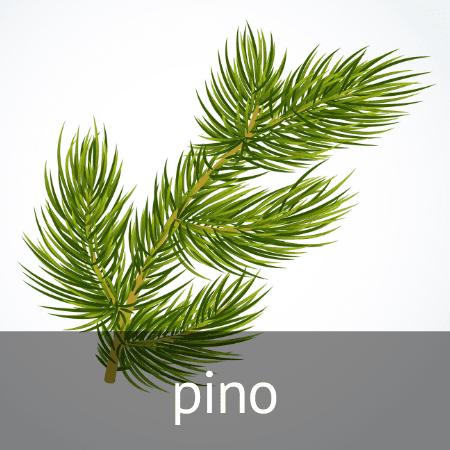 Esencia de pino en Diverco